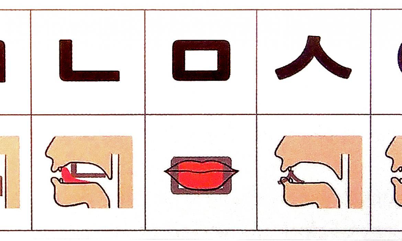 Oblik i položaj govornih organa pri izgovoru konsonanata u korejskom